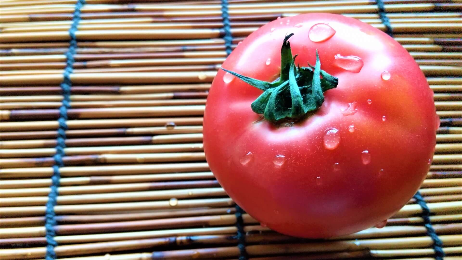 【Wellness Farm Day -はたけの日-】枝豆・トマト収穫体験@ひらかた独歩ふぁーむ