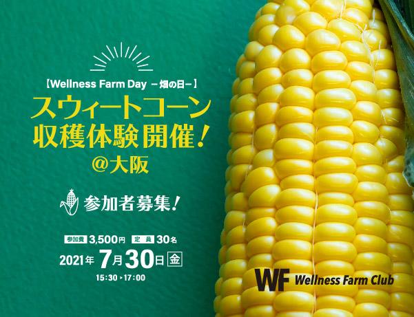 7月30日【Wellness Farm Day-畑の日-】参加者募集! スウィートコーン収穫体験開催!@大阪
