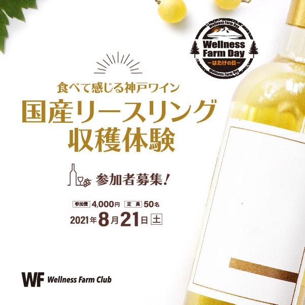 8月21日【Wellness Farm Day-はたけの日‐】食べて感じる神戸ワイン!国産リースリング収穫体験@神戸ワイナリ