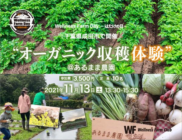 11月13日【Wellness Farm Day】-はたけの日- 千葉県成田市でオーガニック収穫体験